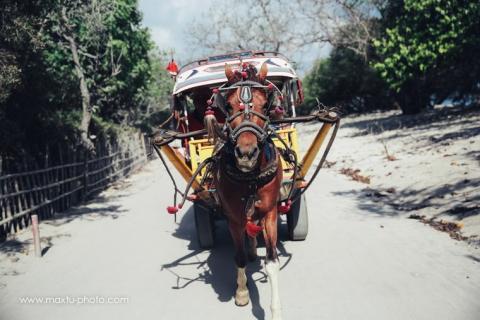 bali wedding destinations photographer